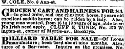 New York Times want ad 1854—the only New York Times ad with NINA for men.