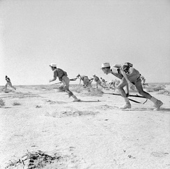 Free French forces at the Battle of Bir Hakeim, 1942