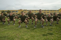 Recruits performing squats as part of physical training