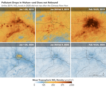 Images from the NASA Earth Observatory show a stark drop in pollution in Wuhan, China, when comparing NO2 levels in early 2019 (top) and early 2020 (bottom).[974]
