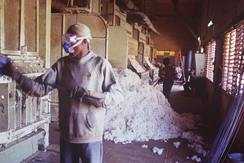Cotton processing at CMDT