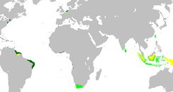 A map showing the territory that the Netherlands held at various points in history. Dark green indicates colonies that either were, or originated from, land controlled by the Dutch West India Company, light green the Dutch East India Company. In yellow the territories occupied later, during the 19th century.