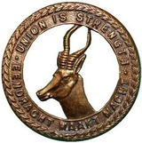 Union Defence Force 1 South African Brigade Cap Badge.jpg