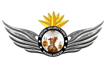 Special Security Force Logo.jpg