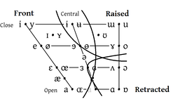 Front vowels are one of three articulatory dimensions of vowel space