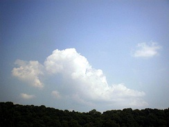 Cumulus over Dooars, West Bengal