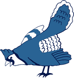 The blue jay patch worn by the Phillies from 1943 to 1945.