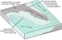 The structure of the Florida platform, the foundation of which came from the African plate over 200 million years ago.