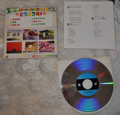 A 20-cm Japanese NTSC LaserDisc for karaoke.