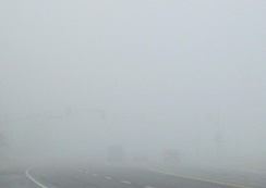 Dense tule fog in Bakersfield, California. Visibility in this photo is less than 500 feet (150 m).
