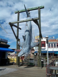 The previous icon of the Jaws ride is still a popular photo spot.