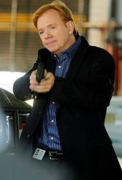 David Caruso appears as Lieutenant Horatio Caine.