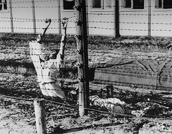 Two Dutch Jews who committed suicide by touching the electric fence in Mauthausen, 1942