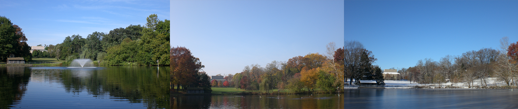 A montage of the Haverford duck pond through the seasons. October 1, 2007; November 21, 2007; December 6, 2007.