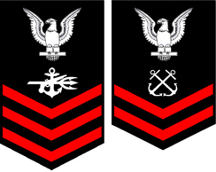 From left to right: the service dress blue rating badge for a special warfare operator first class and a boatswain's mate second class.