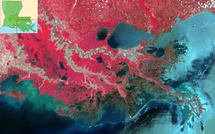 False-color image of the larger Mississippi River Delta