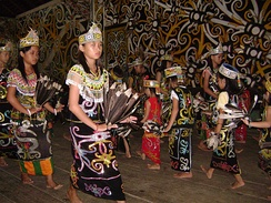 One of the basic Dayak dances performed in a ceremony in 2007