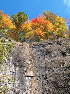 Fall foliage at Natural Tunnel State Park in Scott County