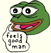"The Pepe the Frog meme, originally created in 2005, was adopted by the alt-right and became a ""mascot"" for the movement.[351]"