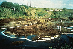 Oil stains river bank about ten feet above stream level. People in protective white suits have placed white absorbent boom to catch oil in stream.