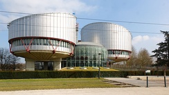 The European Court of Human Rights, following common law principles,[46] protects the rule of law by requiring people's liberty, privacy or other rights are not infringed by the government unless there is a clear legal basis and justification.[47]