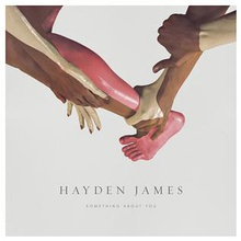 Something About You by Hayden James.jpg
