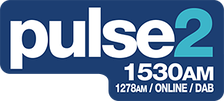 Pulse 2 logo used from 2009 to 2016.
