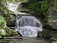 Robert H. Treman State Park in Tompkins County
