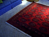 A Turkmen rug in a household setting