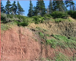 Basal contact of a lava flow section of Fundy basin