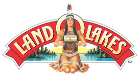The recursive image shown on the Land O'Lakes butter packaging is an example of the Droste effect.